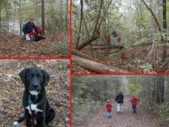 The hiking trip essay